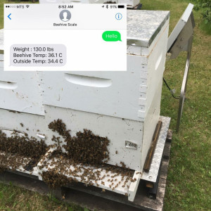 Remote hive setup with example of SMS text.